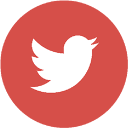 twitter highlighted icon